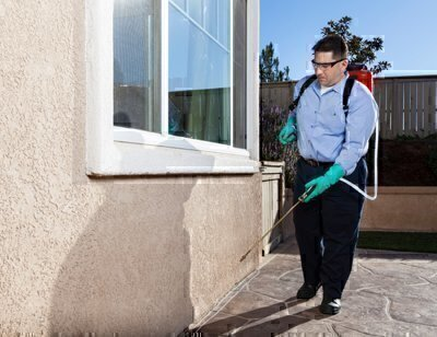 How To Find A Good Exterminator Washington Consumers