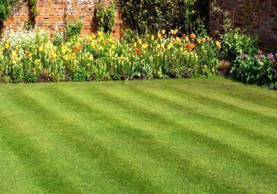 Selecting A Lawn Care Service Delaware Valley Consumers