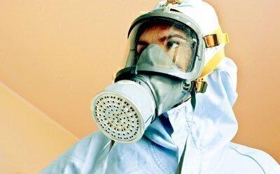 Paint And Environmental Concerns Washington Consumers