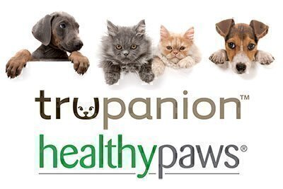 Picks Of The Litter Healthy Paws And Trupanion National